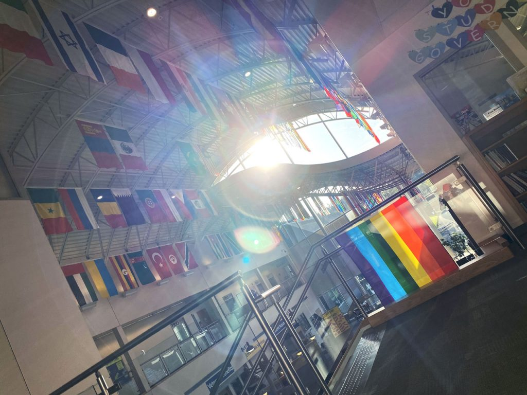 Country flags from around world, pride flag in foreground